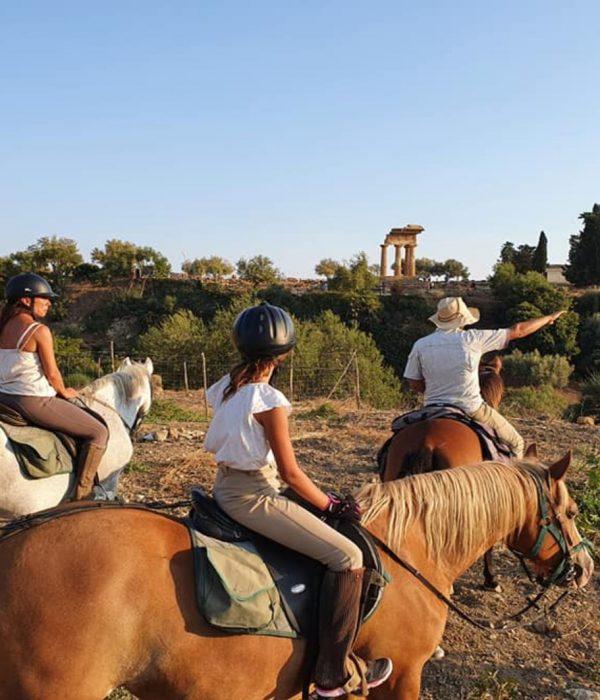 equitazione_3_agrigento(tt)