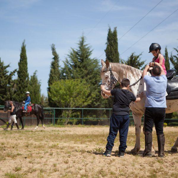 istruttori-equitazione